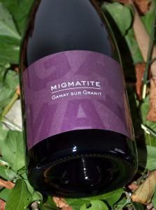Migmatite 2011